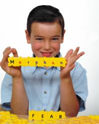 Wordphun Mixed Upper and Lower Case letters set in a bag - 42025B L